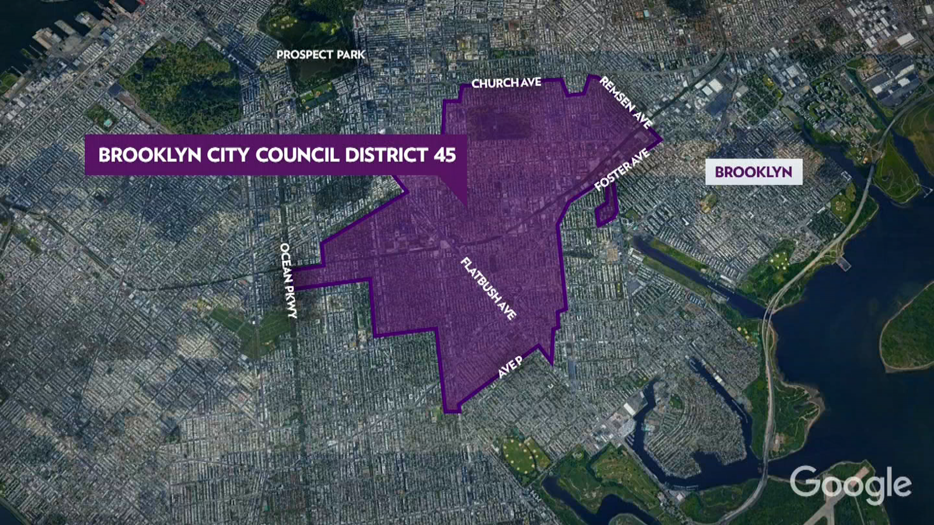Why Adina Sash is Running for City Council
